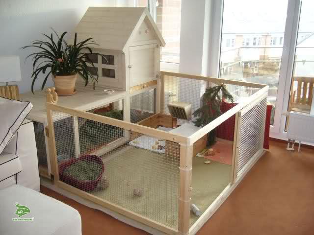 rabbit-house-nha-go-tho